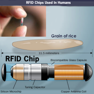 RFIDHumans